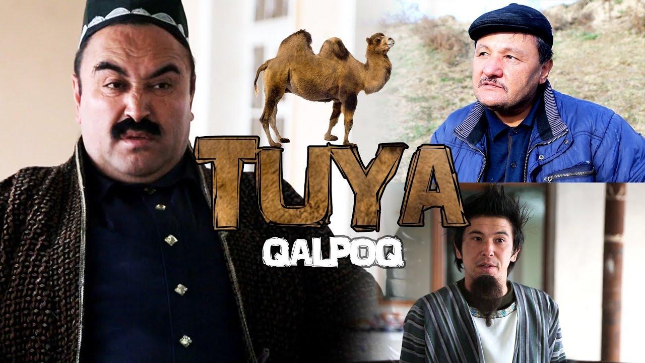 Qalpoq — Tuya — Калпок — Туя (hajviy ko'rsatuv) Tasixda